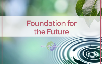 15 – Foundation for the Future