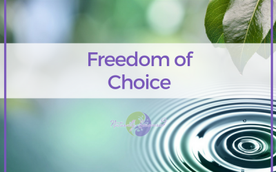 13 – Freedom of Choice