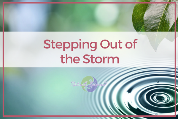 27 – Stepping Out of the Storm