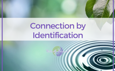 37 – Connection by Identification