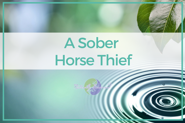 64 – A Sober Horse Thief